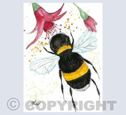 Bee and Fuchsia - By Jacqueline Last