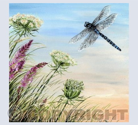 Dragonfly on the Breeze Card