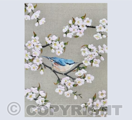 Nuthatch and Blossom by Natasha Pitts