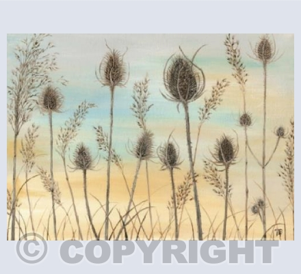 Winter Teasels by Natasha Pitts