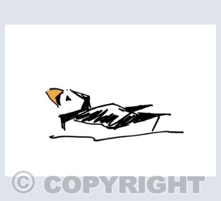Sharpie Puffin 2