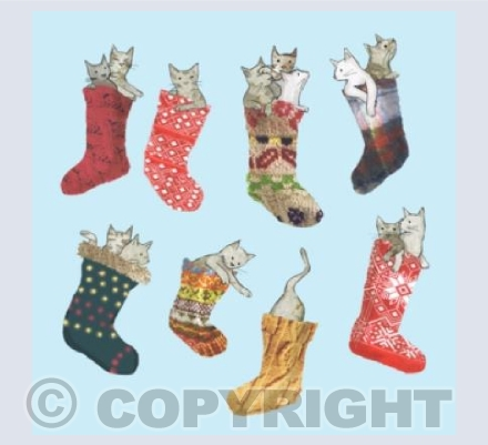 cats in stockings