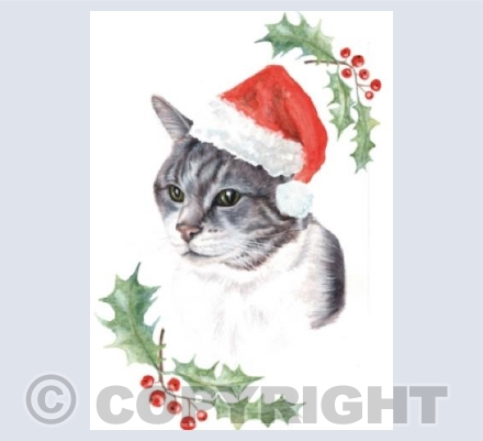 Milly Christmas Cat