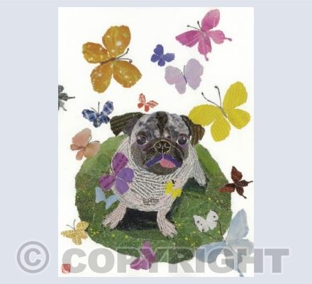 Dog with Butterflies