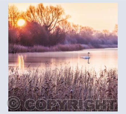 GL_03 Frosty Sunrise