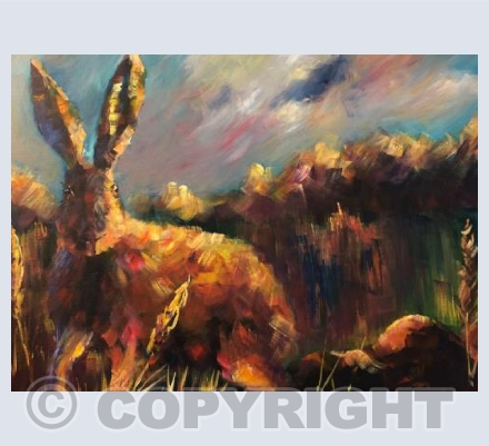 Hare in Autumn. 1