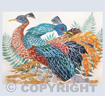 'Bornean Blue Fire-Crested Pheasants'