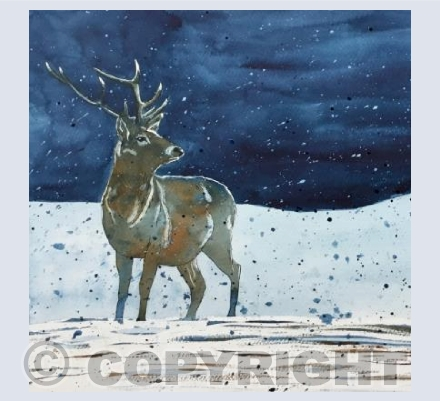 Winters Night - Stag