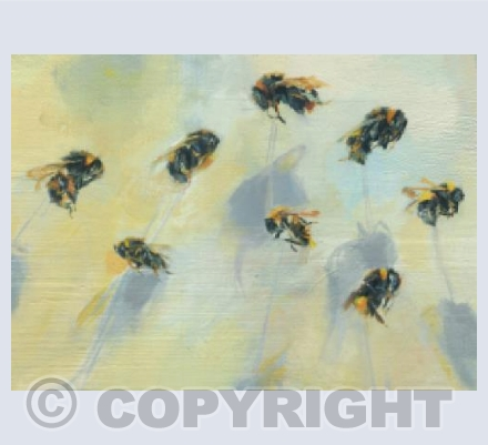 Bumble Bee 263-275 (detail)