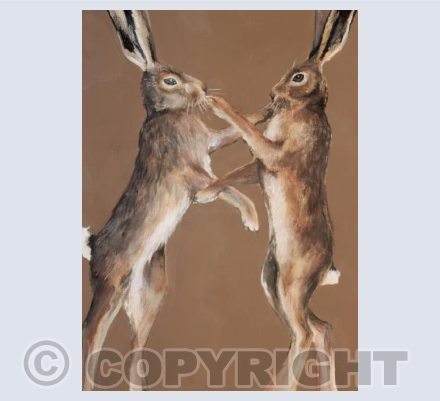 Brown boxing hares