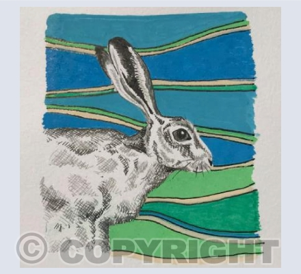 Contemporary Hare