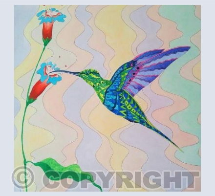 Patterned Hummingbird