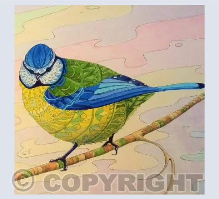 Patterned Blue Tit