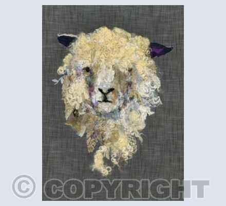 Cotswold Sheep VI