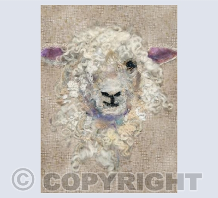 Cotswold Sheep #26