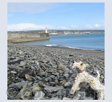 Ben visits Newlyn Harbour, Penzance, Cornwall