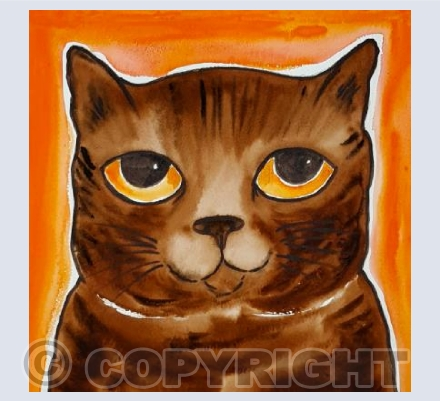 Nigel Brown Tabby Cat