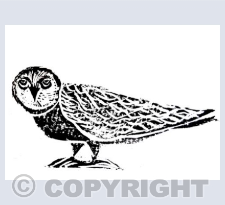 Owl Linocut Black and White