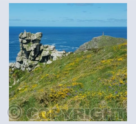 Carn Gloose, Cape Cornwall and a seagull