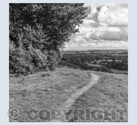 Footpath on Roundway Hill