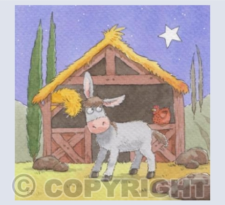 Nativity - The Donkey