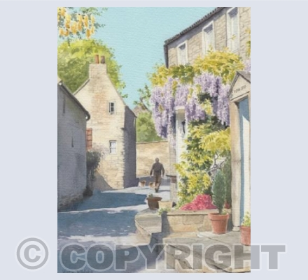 Wisteria in Watergates