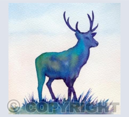 Colourful Stag 1