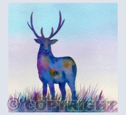 Colourful Stag 2
