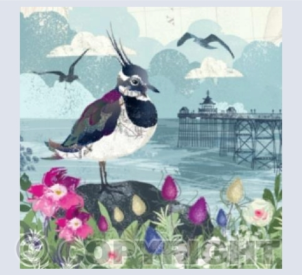 Clevedon Pier & The Lapwing