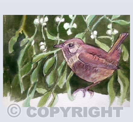 Wren and Mistletoe