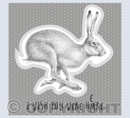 I wish you were hare