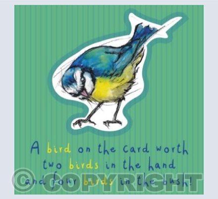 A bird on the card