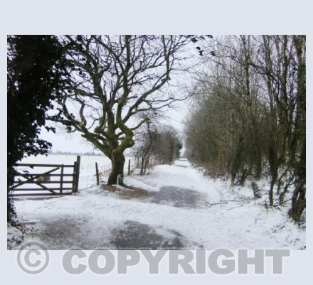 Snow on Darklake Lane
