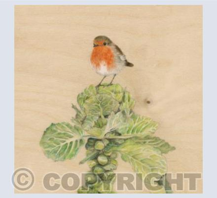 Mr. Robin on Sprout Tree