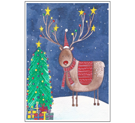 Rudolf's Presents by Janice MacDougall